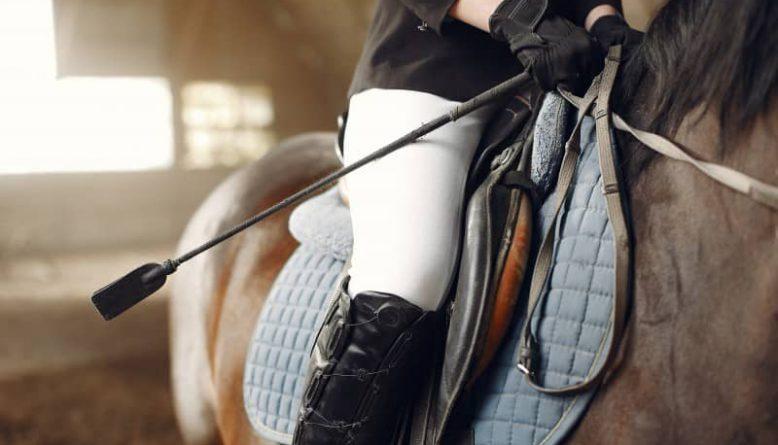 Sprzęt jeździecki niezbędny dla jeźdźca
